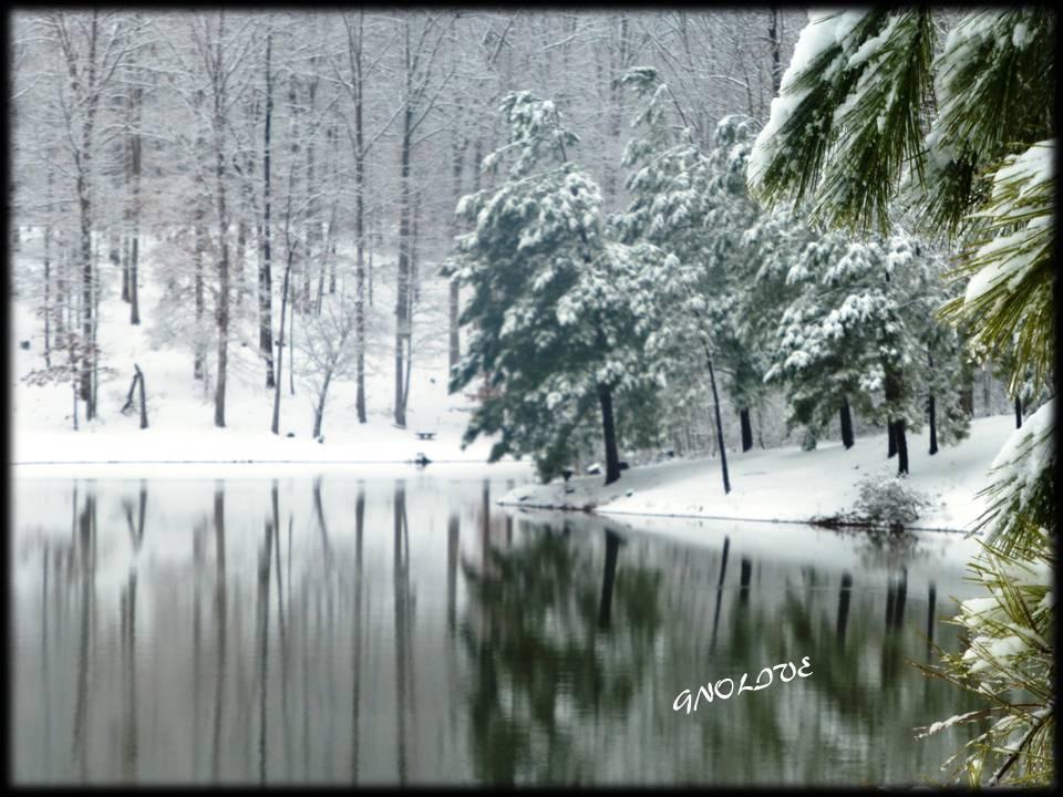 whiite-christmas